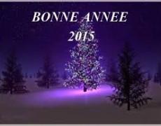 BONNE ANNEE 2015